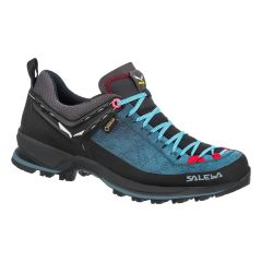 Salewa Mountain TRAINER 2 GTX Damen