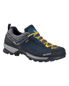 Salewa Mountain Trainer GTX Herren
